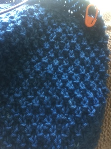Double Moss Stitch, Jefferson Sky Blue